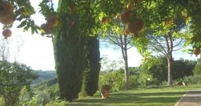 San Vetturino villa indipendente
