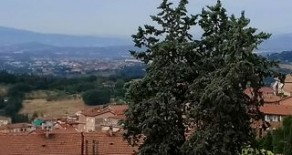 ZONA VIALE ROMA