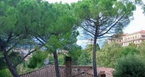 Zona Viale Roma ampio appartamento
