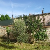 Zona San Francesco appartamento con giardino